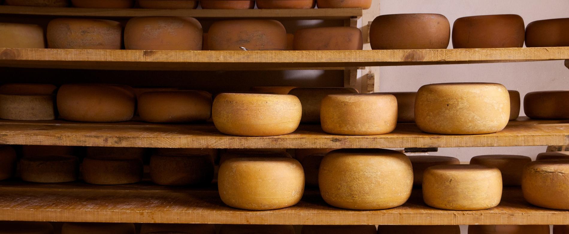 fromage saloir